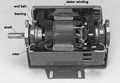 pool pump motor inside