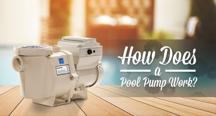 How Does a Pool Pump Work