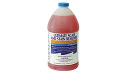 Leslie's Ultimate Scale and Stain Remover