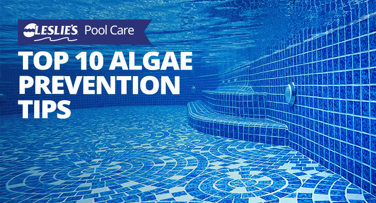 Top 10 Pool Algae Prevention Tipsthumbnail image.