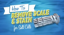 How to Prevent and Remove Scale from Salt Cellsthumbnail image.