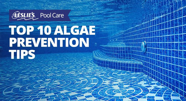Top 10 Algae Prevention Tipsthumbnail image.