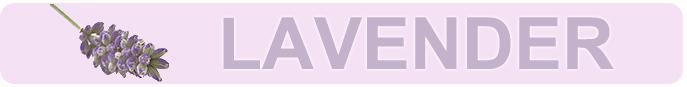 blog-aromatherapy-lavender