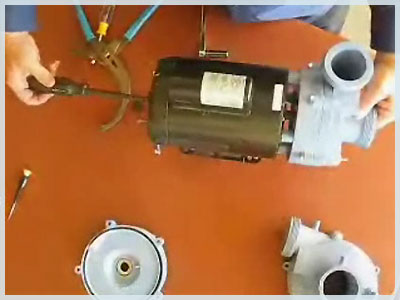 replacing-a-spa-pump-wet-end--2