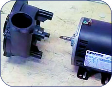 separate-pump-from-;wet-end