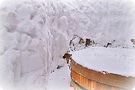 spa-under-snow